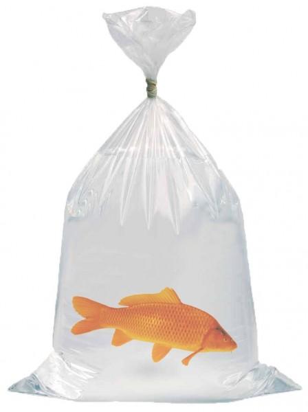 Fischtransportbeutel 25 x 60 cm